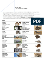 Animal World Map Activities