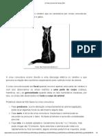 Os Pets precisam de!_ Março 2016_Epilepsia.pdf