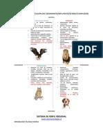 Resumen de Manual de Aplicacion Test Disc