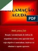INFLAMACAO AGUDA 2