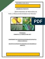 Anexo II. Proyecto Regional Piña Apachtepetl Ok