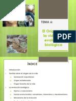 El Origen de La Vida y La Evolucic3b3n Biolc3b3gica