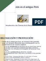 5.1 La Alimentación en El Perú