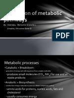 Major metabolic pathways.pptx