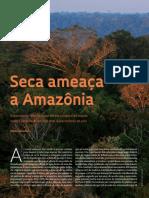016-021_Amazonia_238