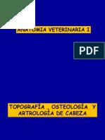 Topografía , Osteología y Artrología de Cabeza