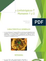 EXPO VIROLOGIA Virus Linfotròpicos T Humanos 1 y 2