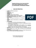Guia de Practica Gerencia en Salud 2017-II