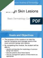 Benign Skin Lesions
