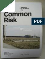 Vigano P_2012_Situations Scenarios_in Our Common Risk