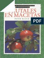 Frutales en Macetas