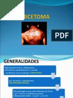 micetoma-1-1-1.ppt (1)