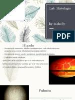Tercer Parcial Lab.histologia