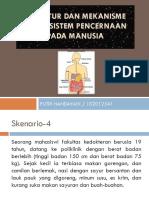 PBL 9 sken 4