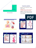 Sistema Respiracao e Adaptações Durante o Exercicio -Fisio Exer Facol