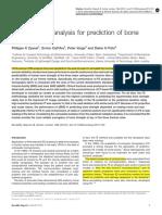 Finite Element Analysis for Prediction of Bone