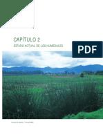 Estado actual de los humedales.pdf