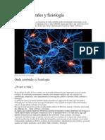 Onda Cerebrales y Fisiología