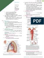 Posterior and Anterior Mediastinum
