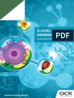 251799-drawing-skills-booklet-handbook.pdf