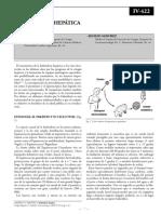 cveintidos.pdf