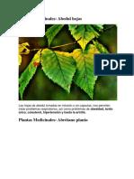 230_Plantas_Medicinales