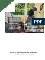 Proceso de Fortalecimiento Territorial a Consejos Comunitarios Instituto de Estudios Interculturales