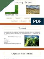 carcavas  edafologia.pptx