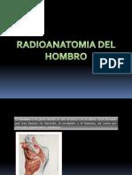 Radio Anatomia Del Hombro
