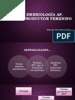 Embriología aparato reproductor femenino