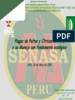 E Nuñez.pdf