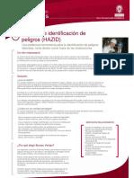 Hazid.pdf