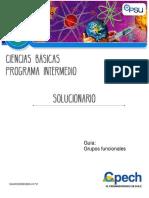 2017 Solucionario CB33 Clase 20 Grupos funcionales.pdf