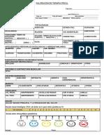 formatodevaloracionparafisioterapeutas-160517165649