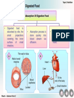 Absorption Of Digested  Food.ppt