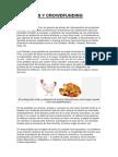 POLLADAS Y CROWDFUNDING- INICIO DE CURSO.docx