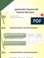 1. Organización General Del Sistema Nervioso