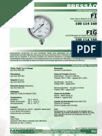 P51-FI 100114160
