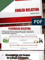 PLUSVALÍA-RELATIVA