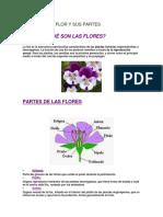 Definicón de Flor y Sus Partes