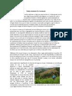 Medio Ambiente En Guatemala.docx