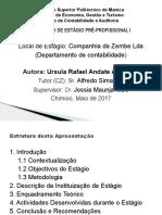 DEFESA RELATORIO.pptx