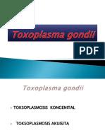 Toxoplasma Gondii Fix