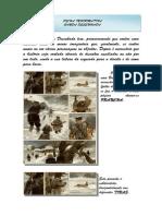 ficha_informativa_bd