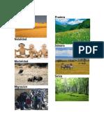 Zonas Agrícolas e Industriales de Guatemala
