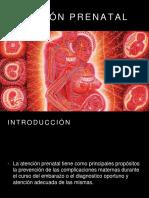 Atencionprenatalobstetricia2