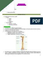 Metabolismo Óseo Balance Calcio-Fosforo