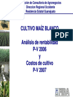 MAIZ PV Guanajuato - Rentabilidad 2006 Costos 2007