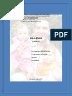 Biografia Luis Mendoza