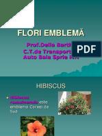 Flori Emblema (1)